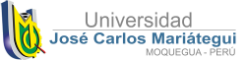 Vicerrectorado de Investigación Universidad José Carlos Mariátegui